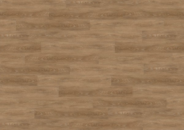 wineo select wood Planke zum verkleben Alba Oak Siena 2,5 mm